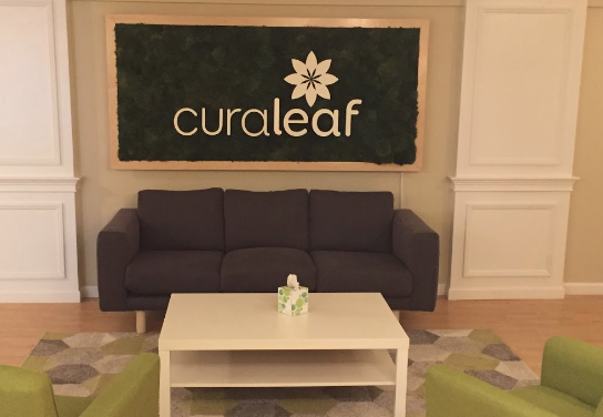 curaleaf hanover  massachusetts dispensary