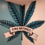Logo at Sira Naturals Needham Dispensary - Sira Naturals