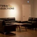 Waiting Area at Natural Selections Colorado Dispensary - Credit: Natural Selections