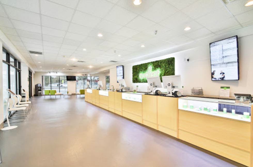 Sales Counter at Curaleaf's Tallahassee Dispensary - Credit: Curaleaf